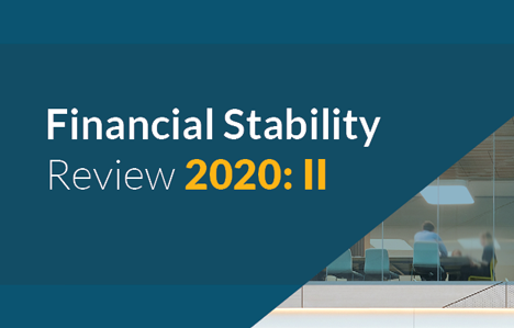 Financial Stability Review 2020 II